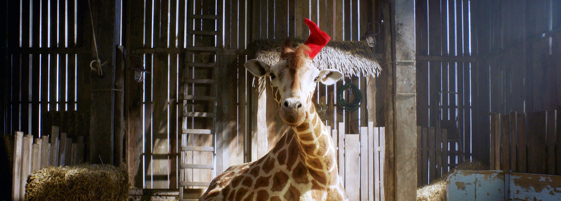 MeinFreundDieGiraffe-WEB2