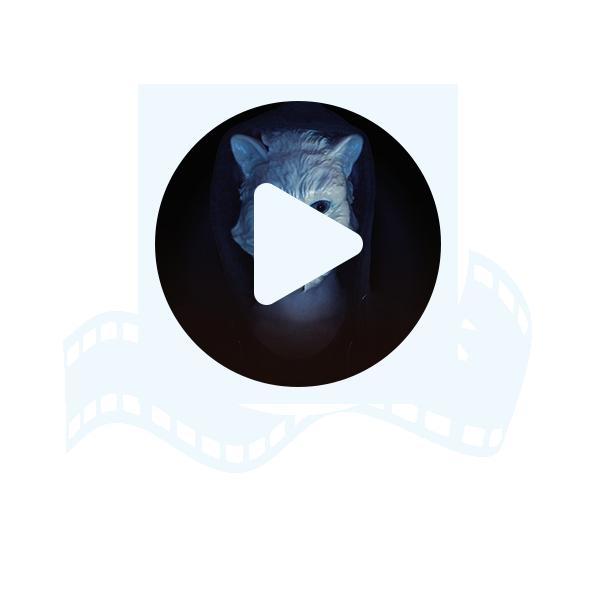 Presskit Trailer - G96